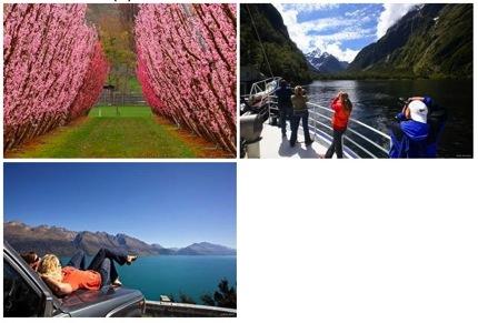 โปรโมชั่น 100% Pure New Zealand Spring Colours ขับรถเที่ยวนิวซีแลนด์ เริ่มต้น 16,970.-