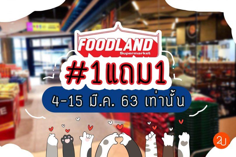 buy 1 get 1 at foodland
